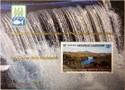 Briefmarken New Caledonia Neukaledonien 1992 Block 13 665a Naturschutz Preservation Nature