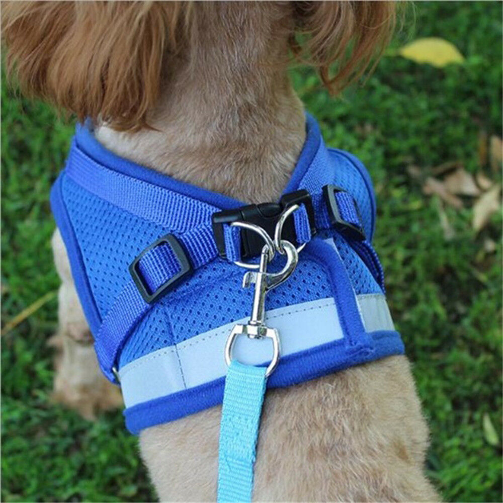Dog Mesh Harness Pet Cat Harness Leash Set Walk Collar Safety Strap Vest 7