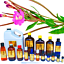 3ml-Essential-Oils-Many-Different-Oils-To-Choose-From-Buy-3-Get-1-Free thumbnail 74