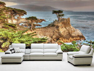 Image Is Loading Lone Cypress Pebble Beach Ca Full Wall Mural