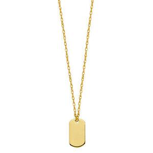 14k yellow gold dog tag pendant necklace 16 to 18 adjustable ebay image is loading 14k yellow gold dog tag pendant necklace 16 aloadofball Image collections