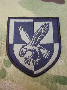 Details about British Army Para 16 Air Assault Combat Jacket/Shirt TRF  Eagle Patch/Badge MTP