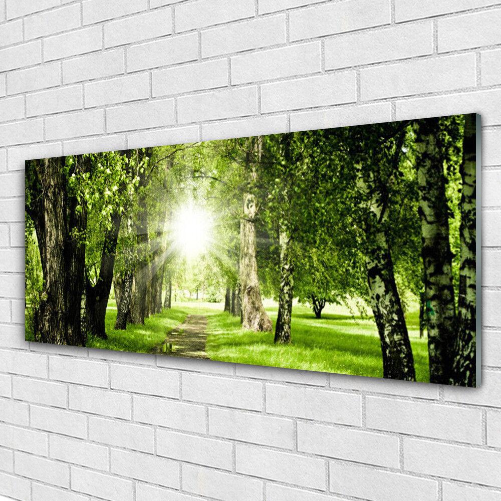 Tableau murale Impression sous verre 125x50 Nature Forêt Sentier Soleil