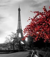 Paris Eiffel Tower with Red Bush Bathroom Shower Curtain 180cm X 200cm Polyester