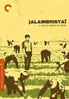 Criterion Collection Alambrista 715515061810 With Ned Beatty DVD Region 1