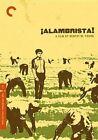 VG Alambrista Criterion Collection 2012 DVD