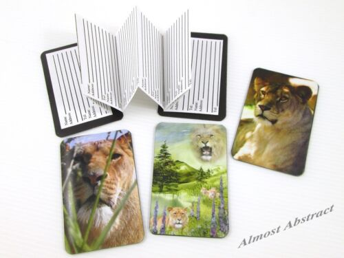 Lions Magnetic Address Book Credit Card Sized ~ New