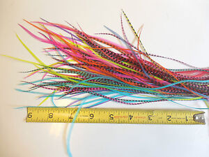 """100 6-9/"""" Whiting Grizzly Rooster Saddle Hackle Feathers Hair Extensions Crafts"""