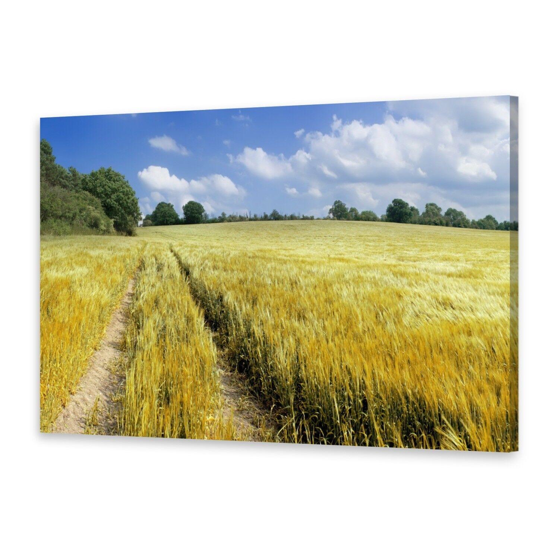 - - - Tela Immagini Immagine Parete stampa su canvas stampa d'arte campo di grano 1c06dd