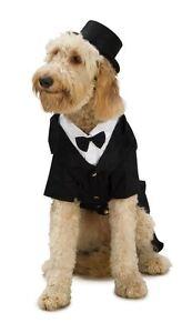 DAPPER-DOG-tuxedo-hat-pet-wedding-ring-bearer-bow-tie-halloween-costume-Large