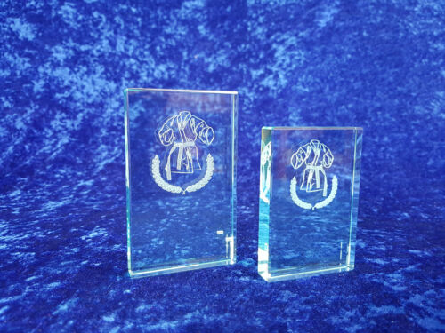 Glass Martial Arts Judo Karate Award Trophy Competition FREE P/&P /& Engraving