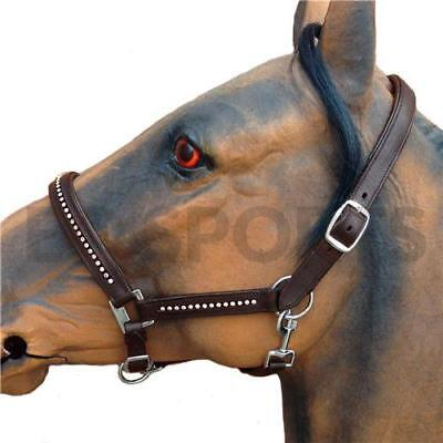 Padded Leather Headcollar with Diamante Detail All Sizes Black//Brown
