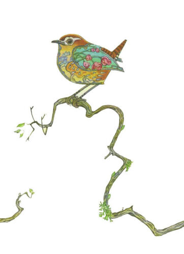 PAGAN WICCAN FINE ART GREETING CARDS Wren BIRTHDAY Birds BLANK DM COLLECTION