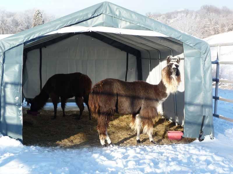 HEAVY DUTY XL Weideunterstand Weidezelt Alpaka Unterstand 3,7m x 7,3m x 2,5m Top