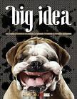 Big Idea by Page One Publishing (Hardback, 2009)