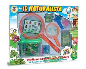 """cm 41x33 Kit completo /""""IL NATURALISTA/"""" per lo studio degli insetti"""