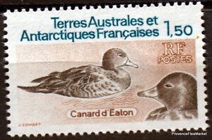 TAAF-CANARD-D-EATON-Yt97-neuf-scan-haute-def-CA24
