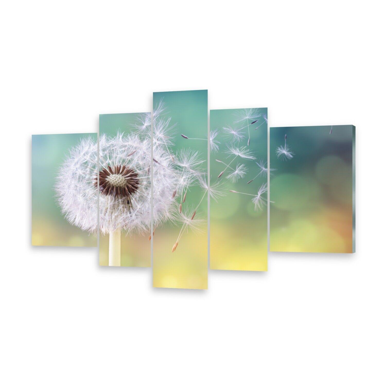 Mehrteilige Bilder Glasbilder Wandbild PusteBlaume
