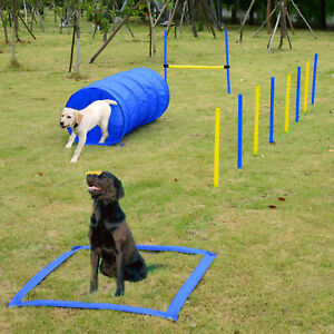Dog Agility Starter Kit Pet Outdoor Exercise Training Set Tunnel Weave Pole