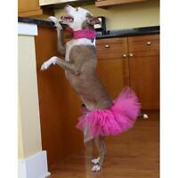Dog Tutu Hot Pink - Free Shipping