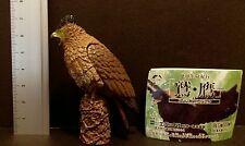 RARE Epoch (Like Kaiyodo Takara) Crested Serpent Eagle Hawk Raptor Bird Figure