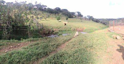 Agostadero con mucha agua y pastura en Atengo Jal
