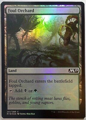 4 x FOUL ORCHARD NM mtg Core 2019 M19 Land Com