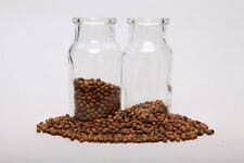 Ololiuqui seeds; Rivea Corymbosa; 500 grams (17.5 oz)