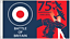 Official Battle Of Britain Spitfire WWII RAF 75th Anniversary 5/'x3/' Flag