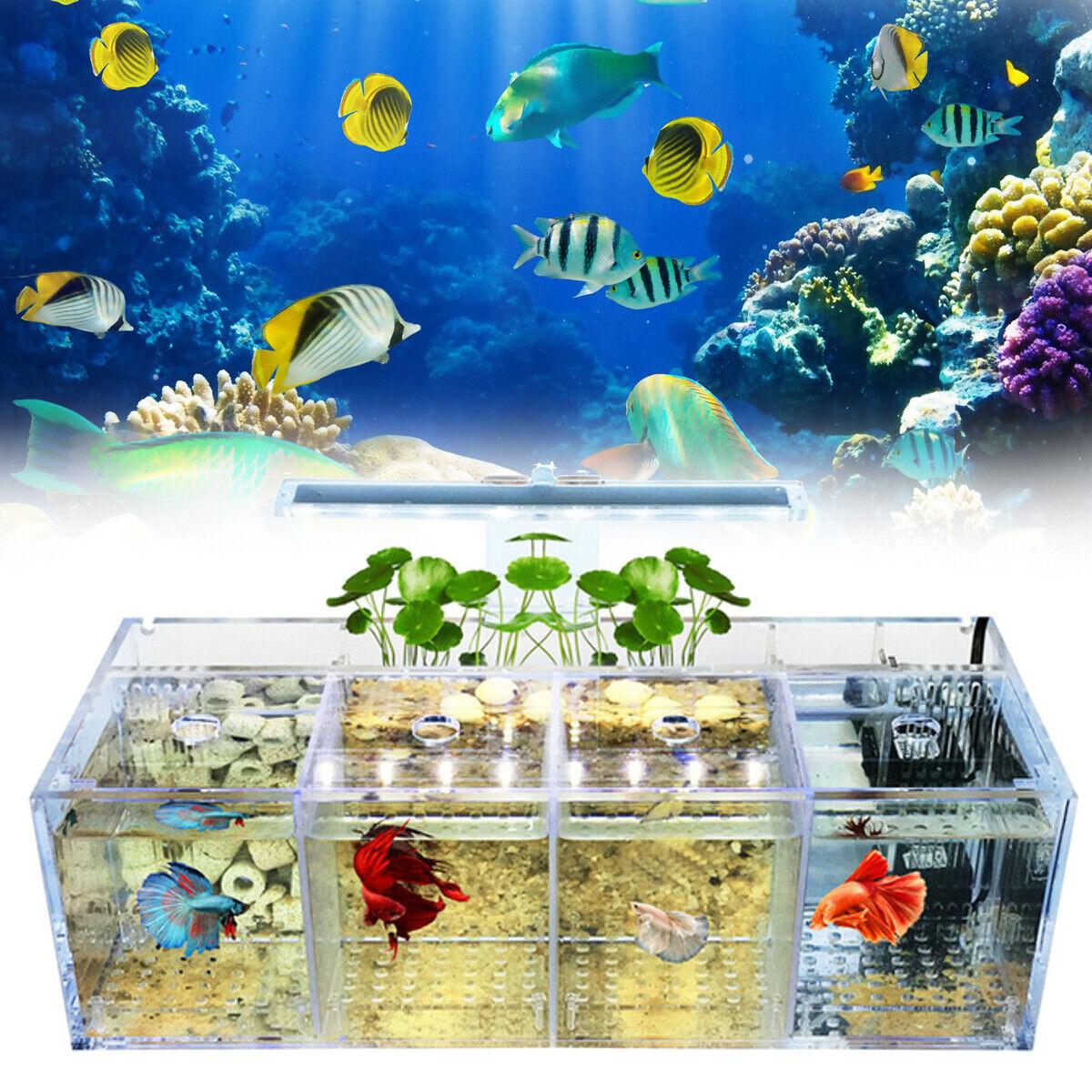 LED Light Acrylic Clear Aquarium Mini Betta Fish Tank Desktop Water Pump Filter