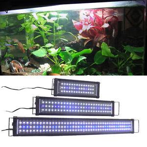 aquarium wei e blaue led beleuchtung leuchte lampe f r 30cm 150cm becken ebay. Black Bedroom Furniture Sets. Home Design Ideas