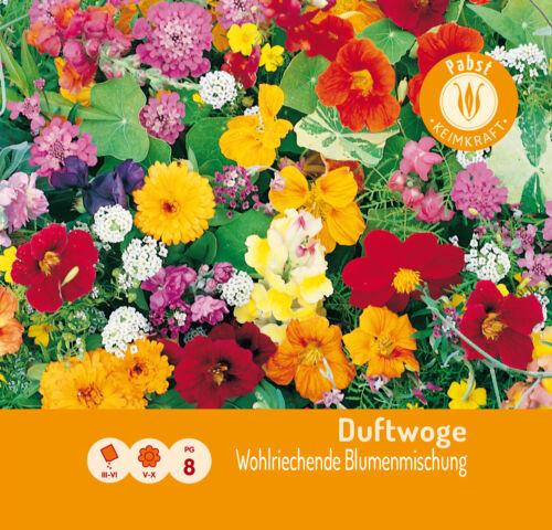 Duftwoge Wohlriechende Blumenmischung 103243 Saatgut Blumen Samen Sämereien