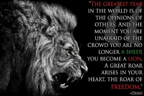 64433 Osho Quotes Lion Inspirational Motivational Wall Print POSTER AU