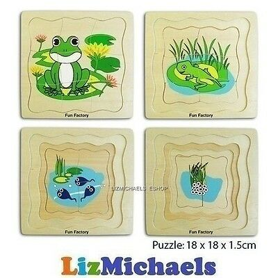 FUN FACTORY WOODEN 4 LAYER FROG LIFE CYCLE JIGSAW PUZZLE Lifecycle Educational T