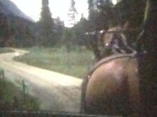 2 Super 8 Cine Films Horse Riding and Horse & Cart In Mountains. B7