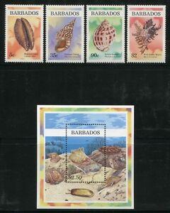 Barbados-1997-Muscheln-Shells-Meerestiere-920-923-Block-33-Postfrisch-MNH