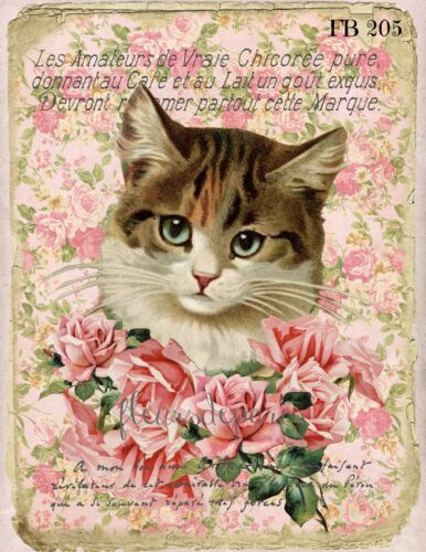 Shabby Chic Vintage Victorian Cat Roses Print on Fabric Quilting Sewing FB 205