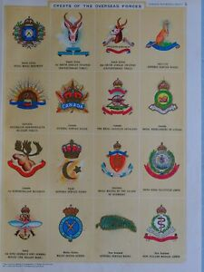 1919-PRINT-CRESTS-OF-OVERSEAS-FORCES-INFANTRY-ROYAL-CANADIAN-EGYPT-BADGE-MALAY