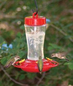 Homestead 12 Oz Hummingbird Feeder Etched Hardened Glass 3910