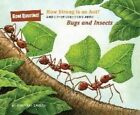 How Strong Is an Ant?: And Other Questions About...Bugs and Insects by Mary Kay Carson (Hardback, 2014)