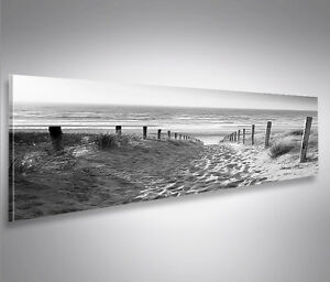 bild auf leinwand weg zum meer schwarz weiss nordseestrand panorama wandbild ebay. Black Bedroom Furniture Sets. Home Design Ideas