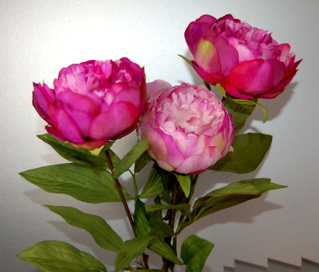Three Stems of Artificial Silk Pink Peonies (A)
