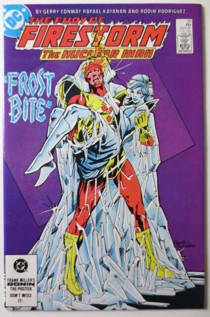 The Fury of Firestorm #20 (Feb 1984, DC) (C3730)