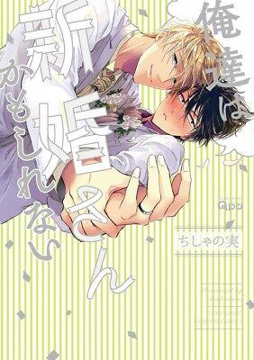 New Koi wo Suru Tsumori wa Nakatta //Japanese Boys Love Comic BL Manga Book