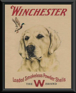 Winchester Pheasant Hunting Advertisement Reprint On 90 Year Old Paper 111