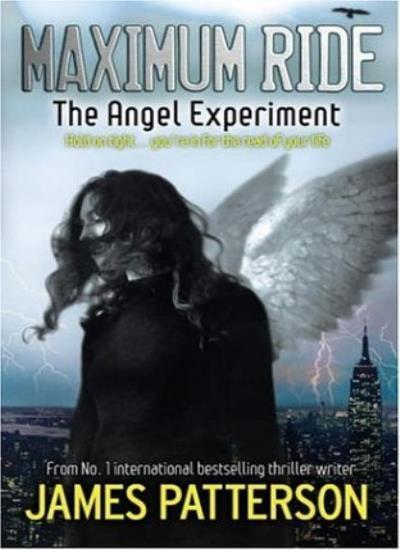 Image result for maximum ride the angel experiment