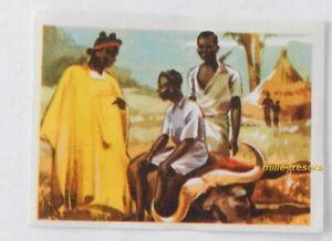 Image CHROMO Chocolat MARTOUGIN N°E3 AFRIQUE pour Album Chasseurs de Fauves