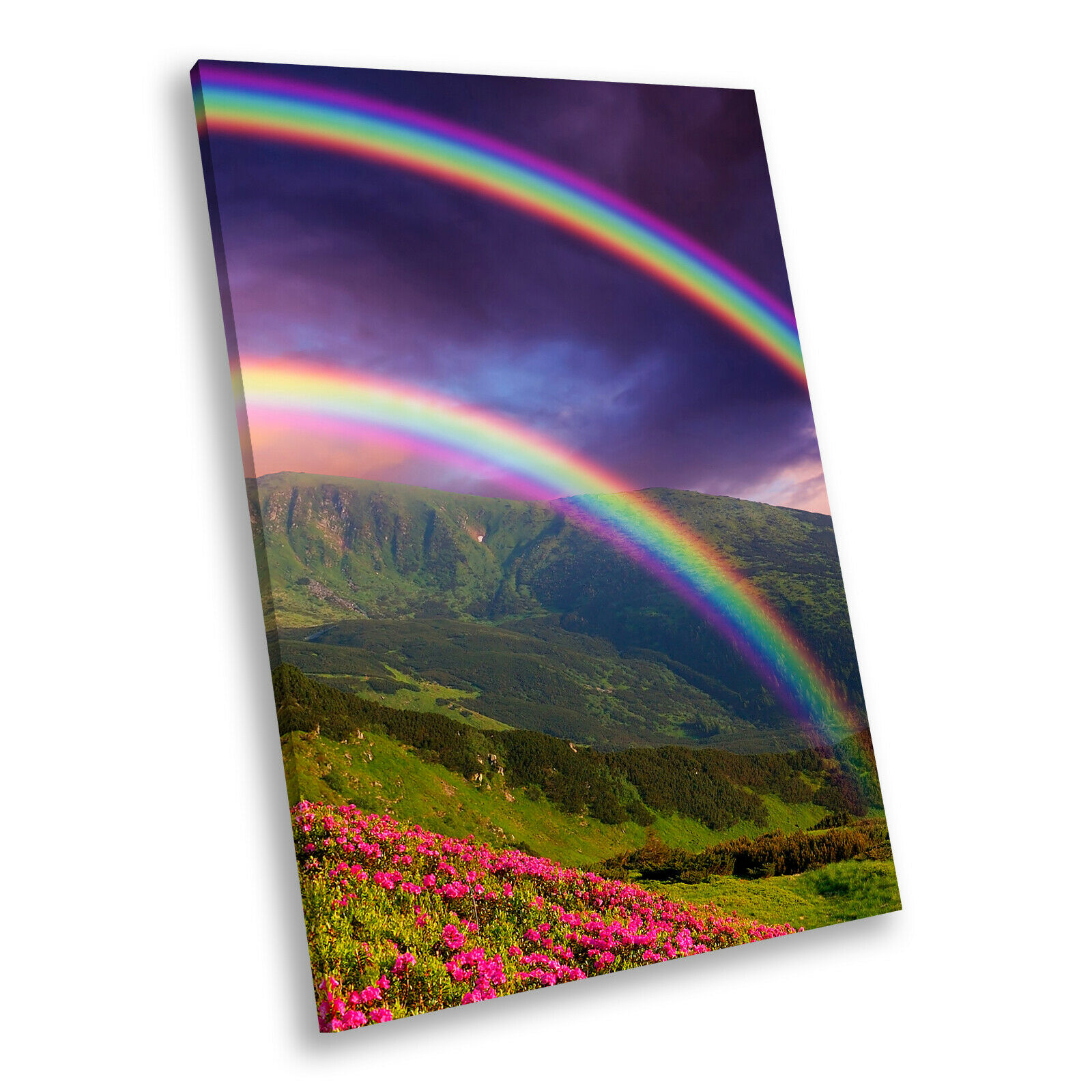 Colourful Rainbow Hill Cool Portrait Scenic Canvas Wall Art Large Picture Prints