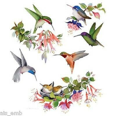 Hummingbird of North America HEAT PRESS TRANSFER T Shirt Sweatshirt Fabric #791d