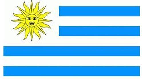 Uruguay Fahne Flagge Hissfahne 80x120 cm mit 2 Ösen WM Flaggen